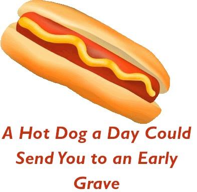 Turkey Hot Dog  Day Fix